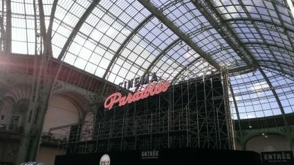 cinéma en plein air au Grand Palais