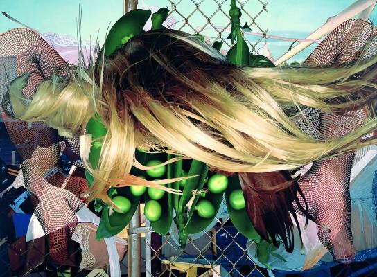 Jeff Koons, Junkyard, 2002 Huile sur toile