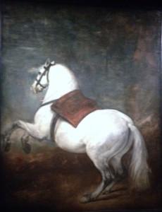 Diego Velazquez, Cheval blanc