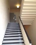 Escalier villa Cavrois